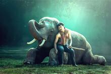 Mahout Sitting On An Elephants Knee Sleeping, Thailand