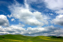 Rural Hilly Landscape, California, USA