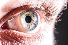 Detailed Blue Eye Macro
