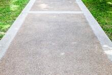 Long Concrete Walkway In The Summer Green Garden