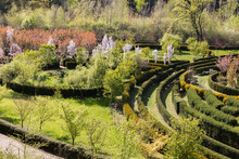 View Of The Park In The Form Of A Labyrinth From A Hedge During The Flowering Period
