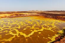 Yellow Colored Sulfur Lake In Dallol, The Danakil Depression, Ethiopia