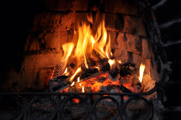 spruce cones burn in the hearth of a fireplace outside the city