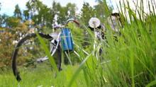 Rower Retro Stary Rower W Trawie