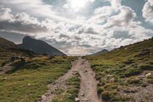 Piegan Pass Trail Cuts Through Alpine Meadow