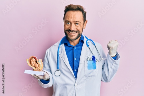 Fotografie, Obraz Middle age gynecologist man holding anatomical model of female uterus with fetus