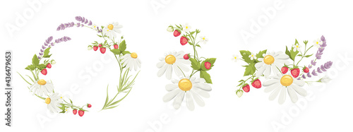 Fotografiet Decor for Wedding invitation with lavender, chamomile and strawberry