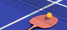 Racket And Ball For Playing Ping Pong