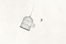 Illustration Of Little Bird Flying Out Of Open Birdcage, Surreal Freedom Motivational Concept