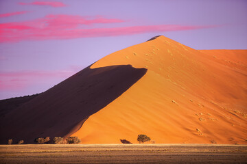 Dune 45, a 170m high dune made from red sand, Sossusvlei, Namib-Naukluft National Park, Namibia