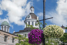 Large Baskets Of Purple And White Petunias Hanging From Black Metal Poles Near Kingston City Hall, Dome And Clocktower, Blue Sky And White Clouds, Nobody