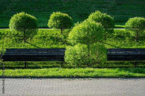Tableau sur Toile Calm water channel in a quiet city park