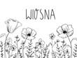 Kolorowanka z napisem wiosna, kwiaty maki do kolorowania dla dzieci