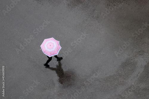 Fotografie, Obraz Rain in a city, woman with umbrella crossing wet road, top view