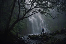 Woman Standing By Tree In Forest Waterfall