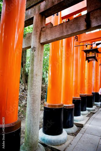Fotografie, Obraz Fushimi Inari Taisha Shrine in Kyoto, Japan with beautiful red gate and japanese garden