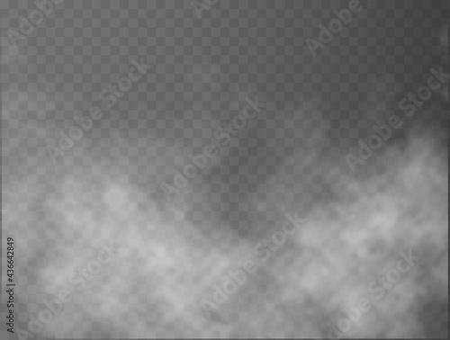 Obraz na plátně Fog or smoke isolated transparent special effect