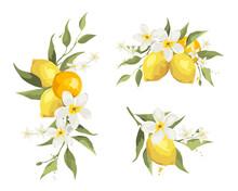 Summer Decor With Jasmine Flowers And Citrus Branch. Floral Design Elements For Wedding Invitation, Vector Illustration, Label.