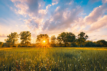 Amazing Sunset Panorama At Magical Countryside Field And Meadow. Forest Trees With Sun Rays Soft Sunset Light Under Colorful Sky In The Morning. Colorful Nature Landscape, Stunning Sunrise Foliage