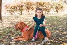 Little Girl Riding On Dogue De Bordeaux Dogue De Bordeaux In The Park