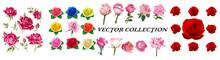 Flower Clip Art. Set Of Decorative Floral Design Elements. Flat Cartoon Vector Illustration. Illustration Of Nature Flower Spring And Summer In Garden.