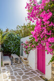 Fototapeta Kwiaty - Traditional Cycladitic alley with a  narrow street, whitewashed facade of a house and a blooming bougainvillea in Naousa  Paros island, Greece.