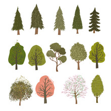 Vector Coloful Set With Colorful Illustrations Of Different Trees Isolated On White Background. Use It As Elements For Design Greeting Card, Poster, Banner, Social Media Post, Invitation, Sale
