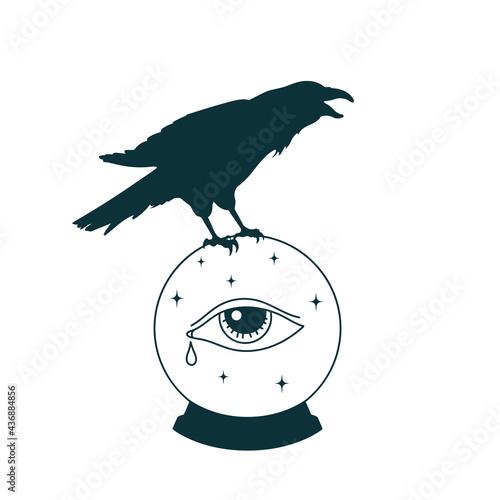 Obraz na płótnie Mystical witch ball with raven