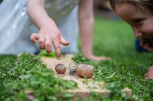 Two Toddler Kids Observing Snails