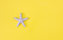 Starfish On A Yellow Background. Flat Lay. Copy Space.