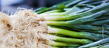 Fresh Green Onions For Sale In The Markets In France.