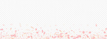 White Blooming Vector Panoramic Transparent