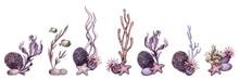 Watercolor Under The Sea Compositions Clipart, Sea Life Art, Ocean Bottom Bouquets, Underwater