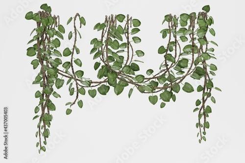 Foto Realistic 3D Render of Liana Plants