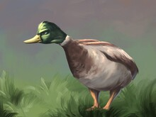 Angry Duck On The Grass