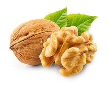 Walnut With Leaf Isolate. Walnut Peeled And Unpeeled With Leaves On White. Walnut Nut Side View. Full Depth Of Field.