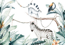 Watercolor Jungle Illustration Of A Lemur And Toucan On White Background. Madagascar Fauna Zoo Exotic Lemurs Animal. Tropical Design Poster
