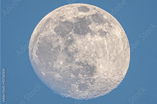 昼間の月 Fotobehang
