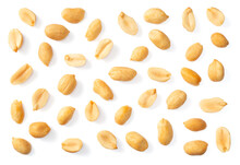 Collection Of Single Roasted Peeled Peanut Isolated On White Background, Top View