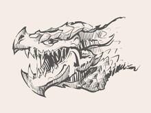 Dragon Head Sketch Hand Drawn