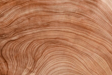 Light Natural Wood Background Stock Photo.