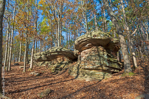 Mushroom Rocks Hiding in the Forest #437121885