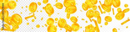 Fotografie, Obraz Chinese yuan coins falling