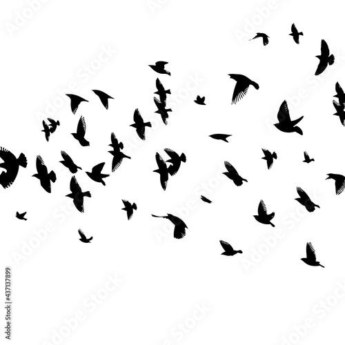 Foto A flock of flying birds. Vector illustration