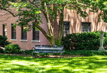 Metallic Bench Placing On Green Public Park Underneath Big Tree With Old Brick Wall Building Background At University, Depth Of Field. Scene Of Peaceful And Relaxation Garden With Sunlight And Shade.
