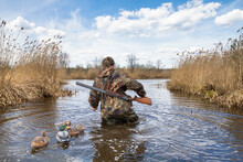 Waterfowler Walks On Lake With Plastic Duck Decoys