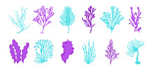 Seaweed. Cartoon Ocean Plants And Fantasy Algae For Posters And Marine Products Illustration. Vector Seaweed Isolated Set
