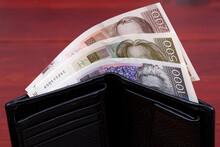 Croatian Kuna In The Wallet
