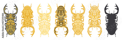 Set of stylised, decorative stag beetle insect vector illustrations, isolated on a white background Fototapet