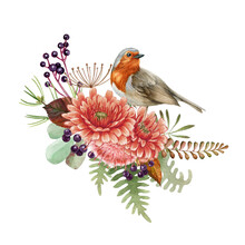 Floral Arrangement With Robin Bird. Watercolor Illustration. Rustic Natural Autumn Element. Hand Drawn Forest Fall Decor With Bird, Flowers, Thistle, Leaves, Fern, Berries. On White Background